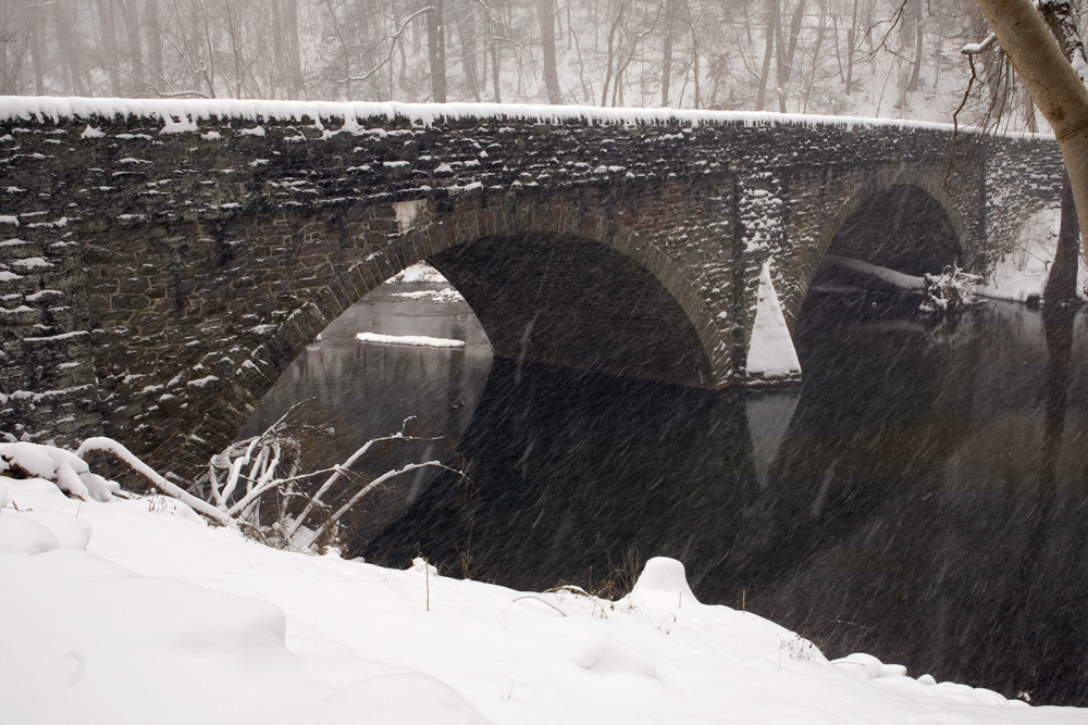 Mt Airy Ave Bridge | Photo: Bradley Maule