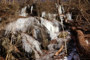 Seepin' & freezin': groundwater in the Wissahickon valley