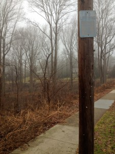 "Might be time to give this ""No Littering"" sign in Carpenter's Woods a fresh coat of paint"