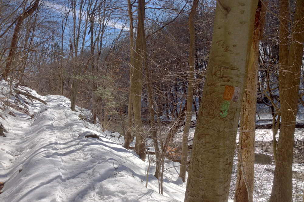 Orange Trail, Lavender Trail ... Green Trail???