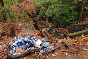 Thanks for the neat pile, anyway: remnants of a Natty Ice party along Rex Run.