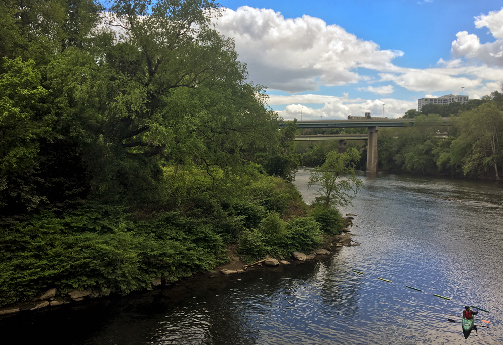 It's all connected: the confluence of the Wissahickon Creek and Schuylkill River